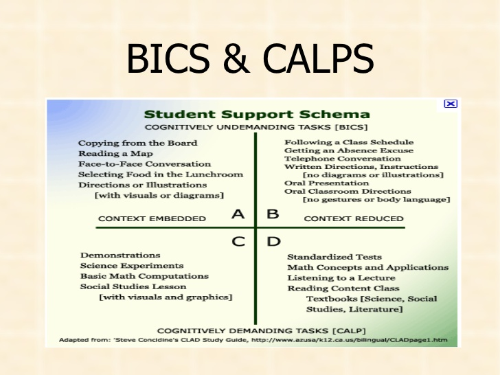 BICs and CALPs quadrant